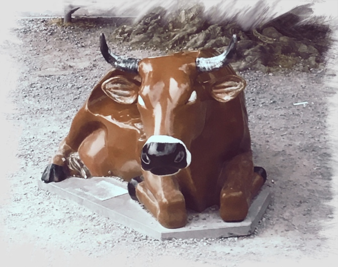 cow_Fotor