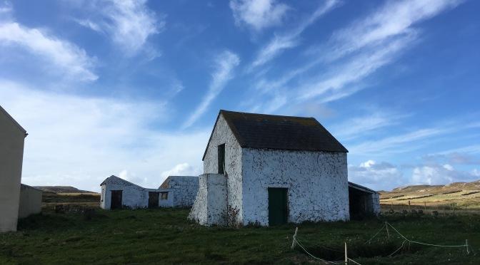 Irish: A Story on Immigration